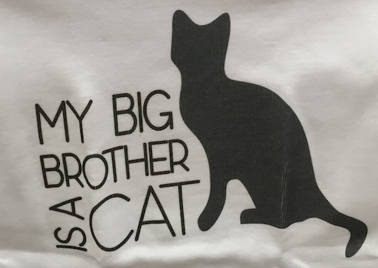 My Big Brother is a Cat